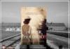 Resenha: Um Amor Perdido - Alyson Richman
